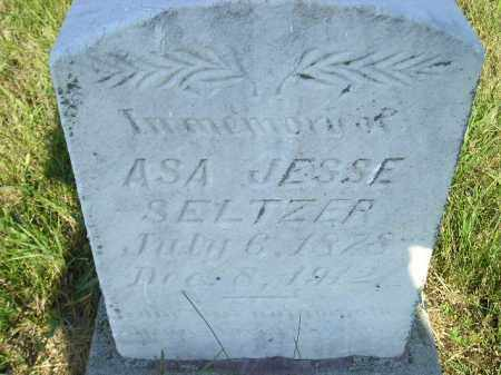 SELTZER, ASA JESSE - Miner County, South Dakota | ASA JESSE SELTZER - South Dakota Gravestone Photos