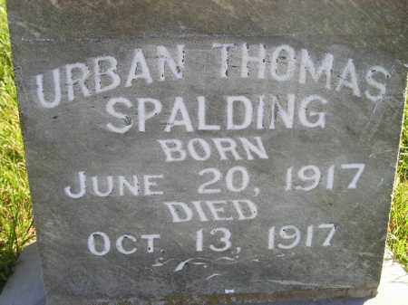 SPALDING, URBAN THOMAS - Miner County, South Dakota | URBAN THOMAS SPALDING - South Dakota Gravestone Photos