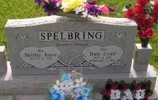 SPELBRING, DALE LLOYD - Miner County, South Dakota | DALE LLOYD SPELBRING - South Dakota Gravestone Photos