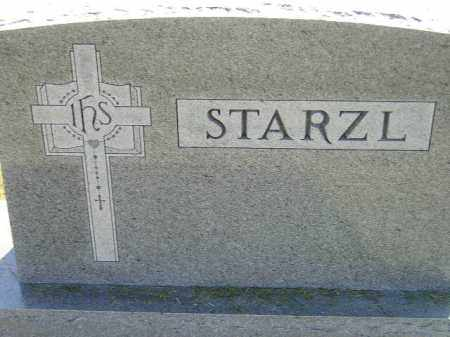 STARZL, FAMILY STONE - Miner County, South Dakota | FAMILY STONE STARZL - South Dakota Gravestone Photos