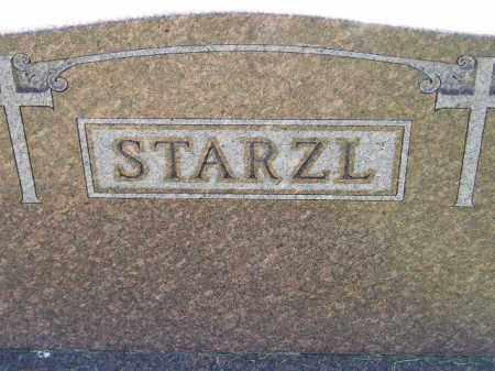 STARZL, FAMILY STONE - Miner County, South Dakota   FAMILY STONE STARZL - South Dakota Gravestone Photos