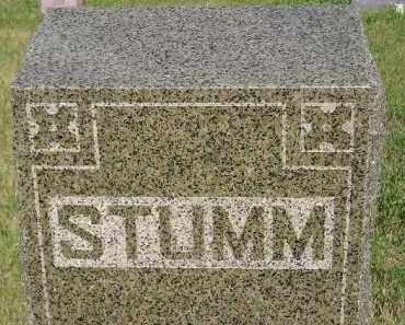 STUMM, FAMILY STONE - Miner County, South Dakota | FAMILY STONE STUMM - South Dakota Gravestone Photos