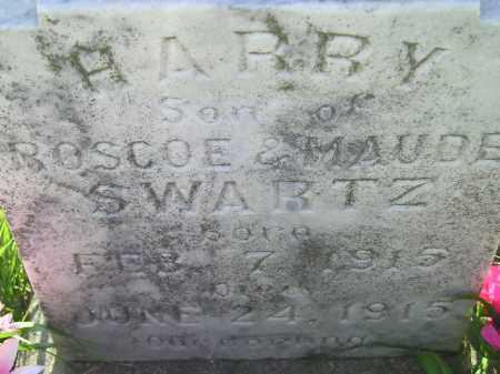 SWARTZ, HARRY - Miner County, South Dakota | HARRY SWARTZ - South Dakota Gravestone Photos