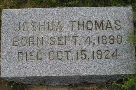 THOMAS, JOSHUA - Miner County, South Dakota | JOSHUA THOMAS - South Dakota Gravestone Photos
