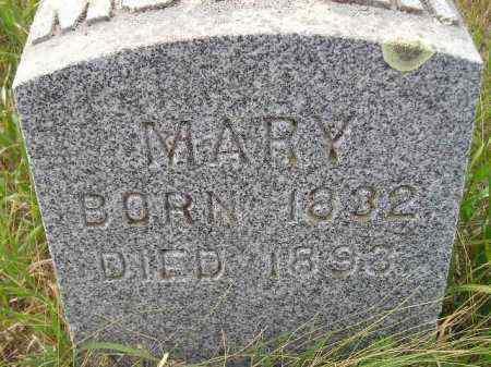 WILLIAMS, MARY - Miner County, South Dakota | MARY WILLIAMS - South Dakota Gravestone Photos