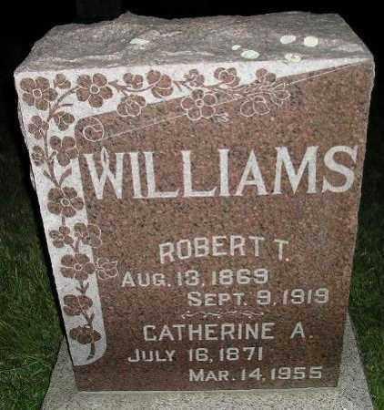 WILLIAMS, ROBERT T. - Miner County, South Dakota | ROBERT T. WILLIAMS - South Dakota Gravestone Photos