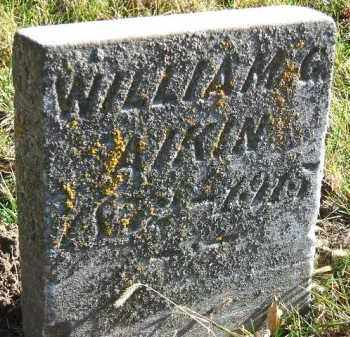 AIKIN, WILLIAM G. - Minnehaha County, South Dakota   WILLIAM G. AIKIN - South Dakota Gravestone Photos