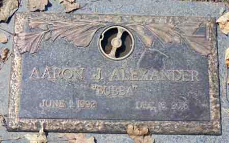 ALEXANDER, AARON J. - Minnehaha County, South Dakota | AARON J. ALEXANDER - South Dakota Gravestone Photos