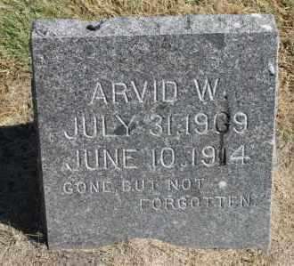 ANDERSON, ARVID W. - Minnehaha County, South Dakota | ARVID W. ANDERSON - South Dakota Gravestone Photos