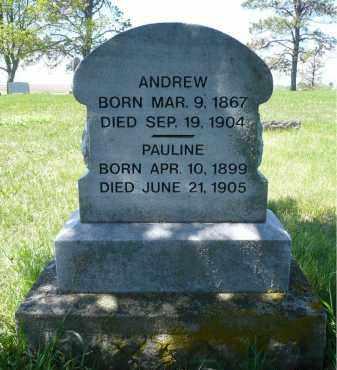 ANDERSON, PAULINE - Minnehaha County, South Dakota | PAULINE ANDERSON - South Dakota Gravestone Photos