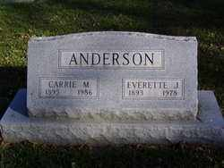 ANDERSON, CARRIE M. - Minnehaha County, South Dakota   CARRIE M. ANDERSON - South Dakota Gravestone Photos