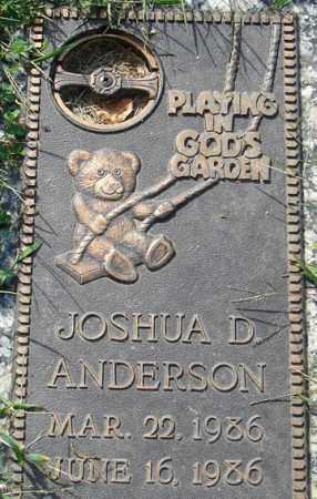 ANDERSON, JOSHUA D. - Minnehaha County, South Dakota   JOSHUA D. ANDERSON - South Dakota Gravestone Photos