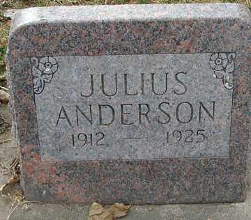 ANDERSON, JULIUS - Minnehaha County, South Dakota | JULIUS ANDERSON - South Dakota Gravestone Photos