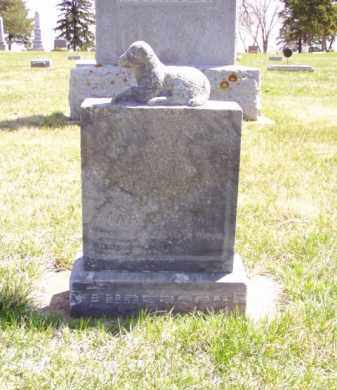 ANDERSON, JAMES MILTON - Minnehaha County, South Dakota | JAMES MILTON ANDERSON - South Dakota Gravestone Photos
