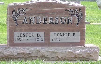 ANDERSON, LESTER D. - Minnehaha County, South Dakota | LESTER D. ANDERSON - South Dakota Gravestone Photos