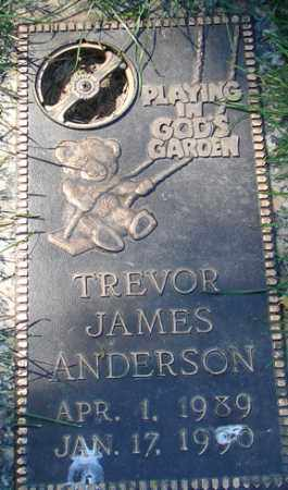 ANDERSON, TREVOR JAMES - Minnehaha County, South Dakota | TREVOR JAMES ANDERSON - South Dakota Gravestone Photos