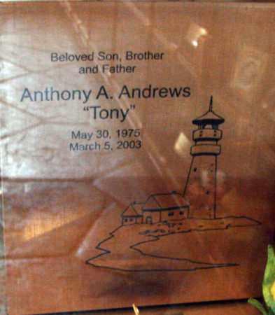 ANDREWS, ANTHONY A. - Minnehaha County, South Dakota | ANTHONY A. ANDREWS - South Dakota Gravestone Photos