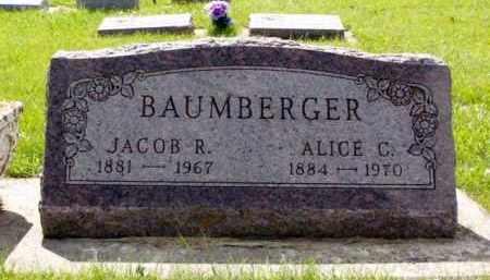 HUNTIMER BAUMBERGER, ALICE CATHERINE - Minnehaha County, South Dakota | ALICE CATHERINE HUNTIMER BAUMBERGER - South Dakota Gravestone Photos