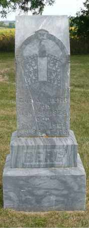 BERG, OLE A. - Minnehaha County, South Dakota | OLE A. BERG - South Dakota Gravestone Photos