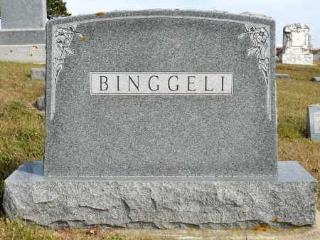 BINGGELI, FAMILY MARKER - Minnehaha County, South Dakota | FAMILY MARKER BINGGELI - South Dakota Gravestone Photos