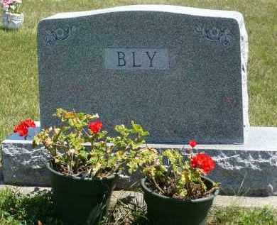 BLY, FAMILY STONE - Minnehaha County, South Dakota | FAMILY STONE BLY - South Dakota Gravestone Photos