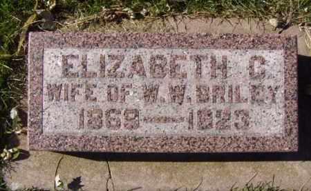 BRILEY, ELIZABETH C. - Minnehaha County, South Dakota | ELIZABETH C. BRILEY - South Dakota Gravestone Photos
