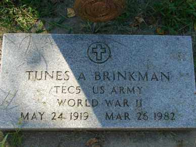 BRINKMAN, TUNES A. - Minnehaha County, South Dakota   TUNES A. BRINKMAN - South Dakota Gravestone Photos