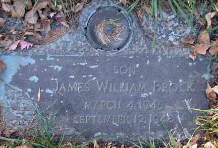 BROCK, JAMES WILLIAM - Minnehaha County, South Dakota | JAMES WILLIAM BROCK - South Dakota Gravestone Photos