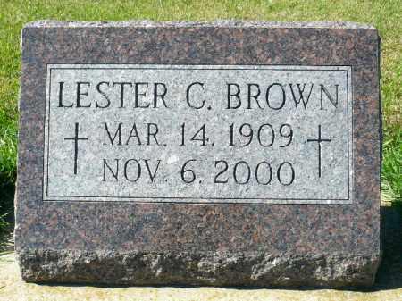 BROWN, LESTER C. - Minnehaha County, South Dakota | LESTER C. BROWN - South Dakota Gravestone Photos