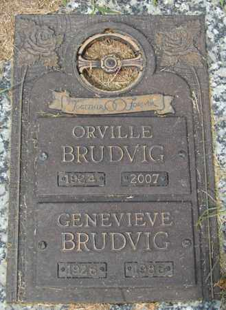 BRUDVIG, ORVILLE - Minnehaha County, South Dakota | ORVILLE BRUDVIG - South Dakota Gravestone Photos