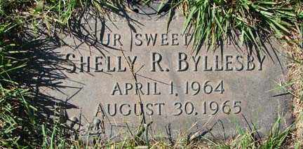 BYLLESBY, SHELLY R. - Minnehaha County, South Dakota | SHELLY R. BYLLESBY - South Dakota Gravestone Photos