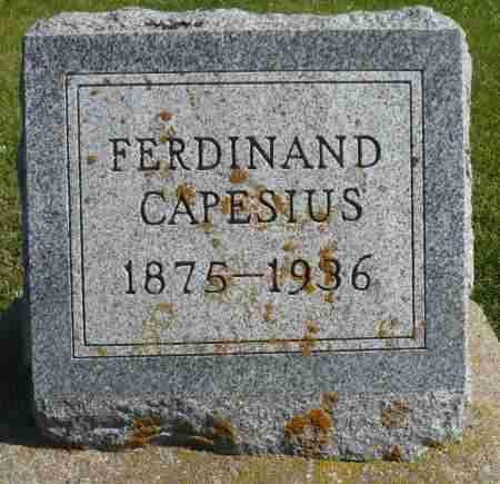 CAPESIUS, FERDINAND JOHN - Minnehaha County, South Dakota | FERDINAND JOHN CAPESIUS - South Dakota Gravestone Photos