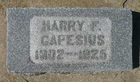 CAPESIUS, HARRY F. - Minnehaha County, South Dakota | HARRY F. CAPESIUS - South Dakota Gravestone Photos
