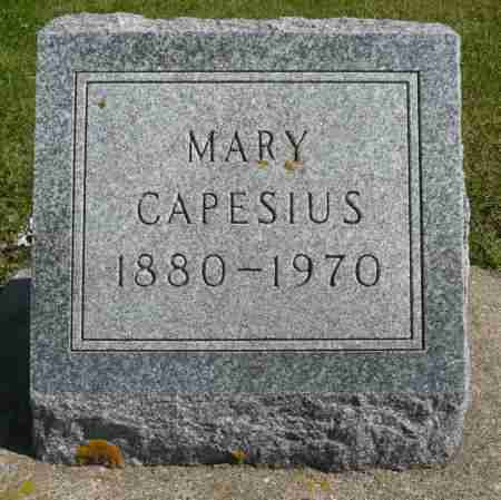 BUDDE CAPESIUS, MARY - Minnehaha County, South Dakota | MARY BUDDE CAPESIUS - South Dakota Gravestone Photos