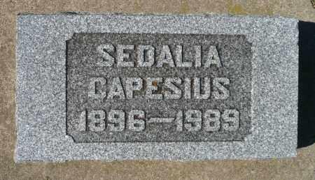 CAPESIUS, SEDALIA - Minnehaha County, South Dakota | SEDALIA CAPESIUS - South Dakota Gravestone Photos