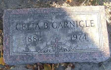 CARNICLE, CELIA B. - Minnehaha County, South Dakota | CELIA B. CARNICLE - South Dakota Gravestone Photos