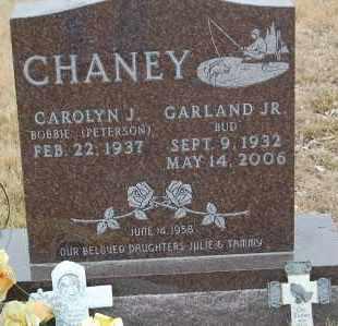 "CHANEY, GARLAND JR.   ""BUD"" - Minnehaha County, South Dakota | GARLAND JR.   ""BUD"" CHANEY - South Dakota Gravestone Photos"