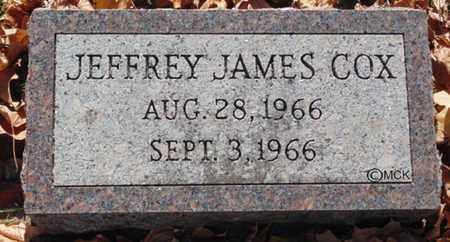 COX, JEFFREY JAMES - Minnehaha County, South Dakota | JEFFREY JAMES COX - South Dakota Gravestone Photos