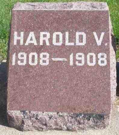 DEVANEY, HAROLD V. - Minnehaha County, South Dakota   HAROLD V. DEVANEY - South Dakota Gravestone Photos