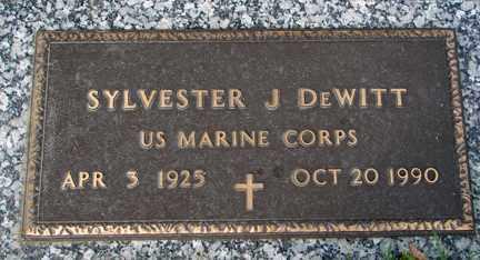 DEWITT, SYLVESTER J. (MILITARY) - Minnehaha County, South Dakota | SYLVESTER J. (MILITARY) DEWITT - South Dakota Gravestone Photos