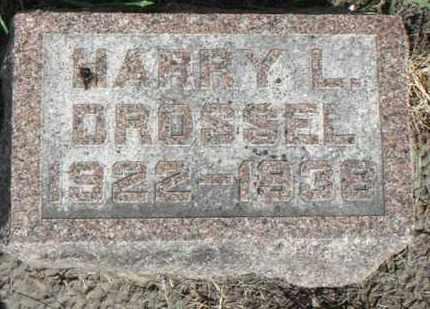 DROSSEL, HARRY L. - Minnehaha County, South Dakota | HARRY L. DROSSEL - South Dakota Gravestone Photos