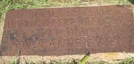 THOMPSON, WILLIE - Minnehaha County, South Dakota | WILLIE THOMPSON - South Dakota Gravestone Photos