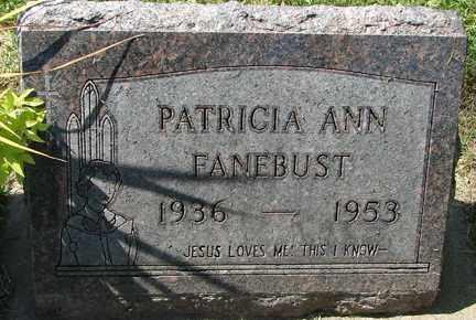 FANEBUST, PATRICIA ANN - Minnehaha County, South Dakota | PATRICIA ANN FANEBUST - South Dakota Gravestone Photos