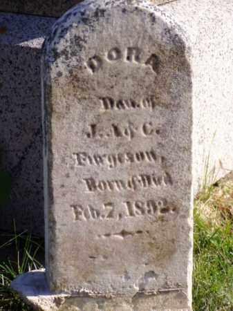FERGUSON, DORA - Minnehaha County, South Dakota   DORA FERGUSON - South Dakota Gravestone Photos