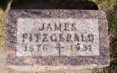 FITZGERALD, JAMES PATRICK - Minnehaha County, South Dakota | JAMES PATRICK FITZGERALD - South Dakota Gravestone Photos