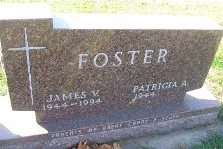 FOSTER, JAMES V. - Minnehaha County, South Dakota | JAMES V. FOSTER - South Dakota Gravestone Photos