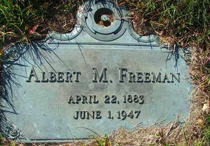 FREEMAN, ALBERT M. - Minnehaha County, South Dakota   ALBERT M. FREEMAN - South Dakota Gravestone Photos