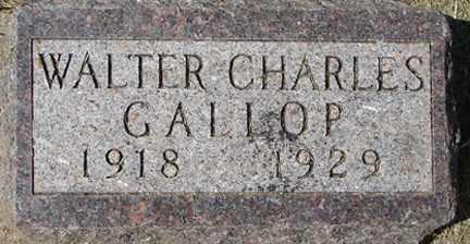 GALLOP, WALTER CHARLES - Minnehaha County, South Dakota   WALTER CHARLES GALLOP - South Dakota Gravestone Photos