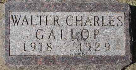 GALLOP, WALTER CHARLES - Minnehaha County, South Dakota | WALTER CHARLES GALLOP - South Dakota Gravestone Photos