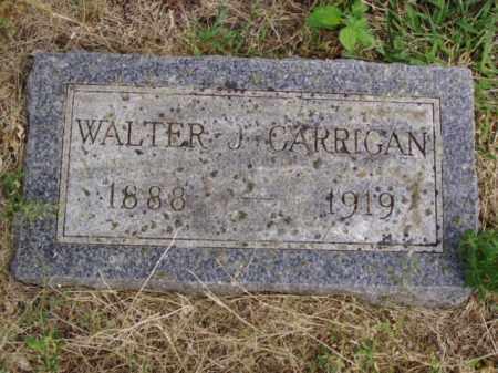 GARRIGAN, WALTER J. - Minnehaha County, South Dakota | WALTER J. GARRIGAN - South Dakota Gravestone Photos